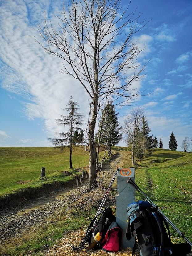 Via Transilvanica – Drumul care uneste – ziua 1